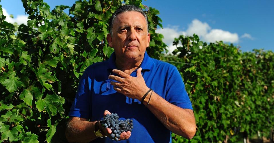 Galvão Bueno é dono de uma fazenda de uvas em Candiota, cidade da Campanha Gaúcha. A região investe para se tornar um polo no turismo de vinhos