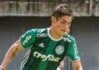 SE Palmeiras/Divulgação