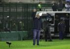 Marcio Cunha/Light Press/Cruzeiro