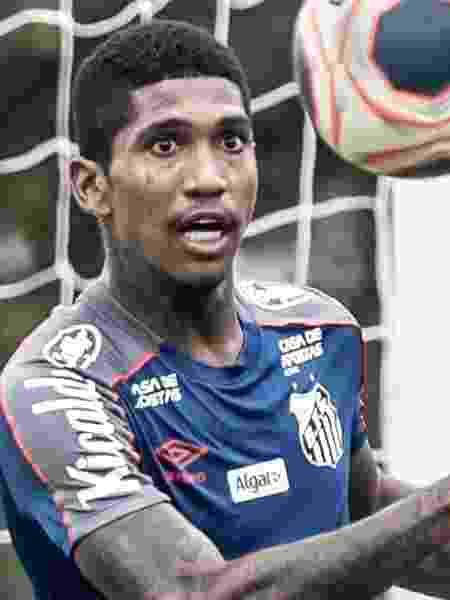 O filho de Raniel se afogou na piscina da casa da família - Ivan Storti/Santos FC e Rubens Chiri/saopaulofc.net