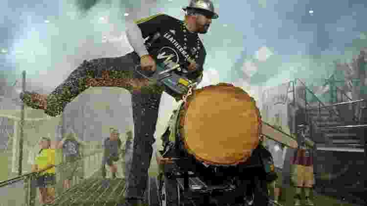 Timber Joey - Divulgação - Divulgação