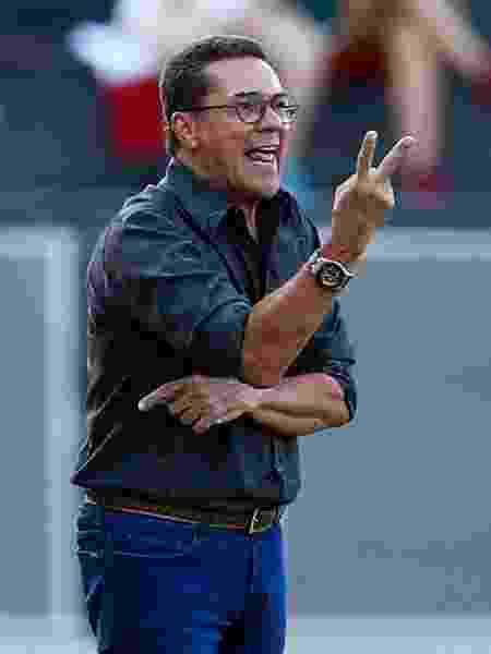 Luxemburgo comanda o Palmeiras contra a Inter de Limeira à beira do campo - Thiago Calil/AGIF