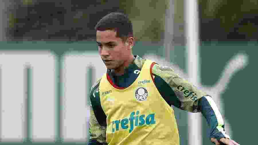 Jovem Vitinho pertence ao Cruzeiro, mas está emprestado ao Palmeiras - Cesar Greco/Ag. Palmeiras