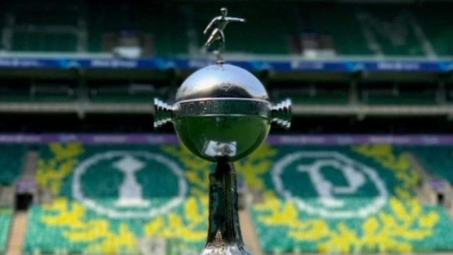 Decoração no Allianz Parque para receber a partida entre Palmeiras e Atlético-MG, pela semifinal da Libertadores - Reprodução/Arquivo pessoal