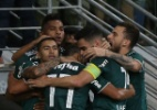 Antes necessidade, rodízio vira motivação no Palmeiras de Felipão - Cesar Greco/Ag. Palmeiras/Divulgação