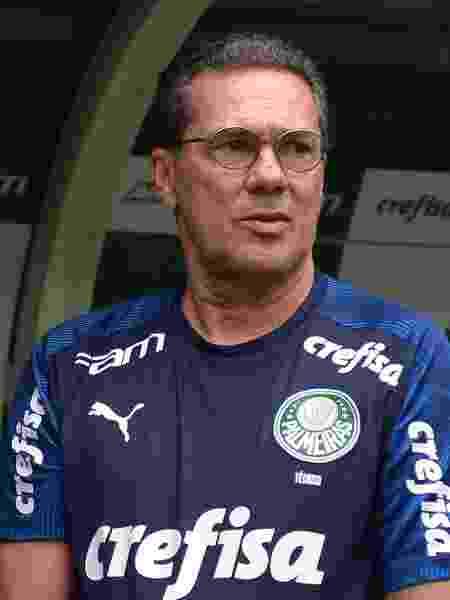 Treinador comandou o Palmeiras no Allianz Parque pela primeira vez - Bruno Ulivieri/AGIF