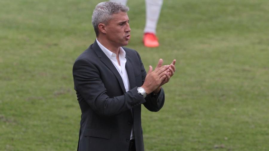 Diretoria do São Paulo busca um centroavante no mercado da bola para reforçar o time de Hernán Crespo - Divulgação São Paulo