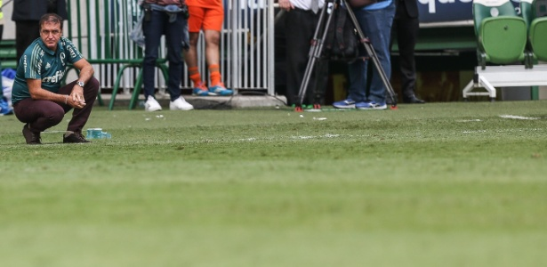 Palmeiras busca atacante pedido por Cuca, mas não vê como prioridade