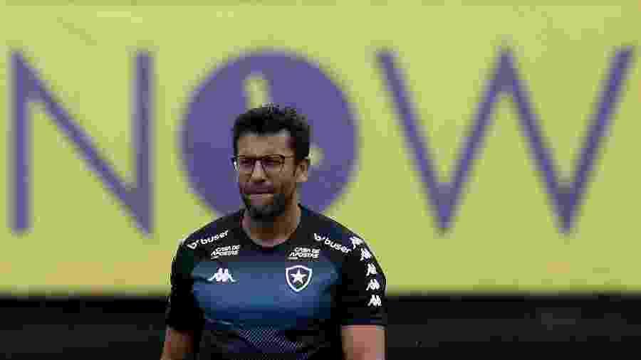 Valentim tem aproveitamento péssimo no Brasileirão por Botafogo e Avaí - Vitor Silva/Botafogo FR