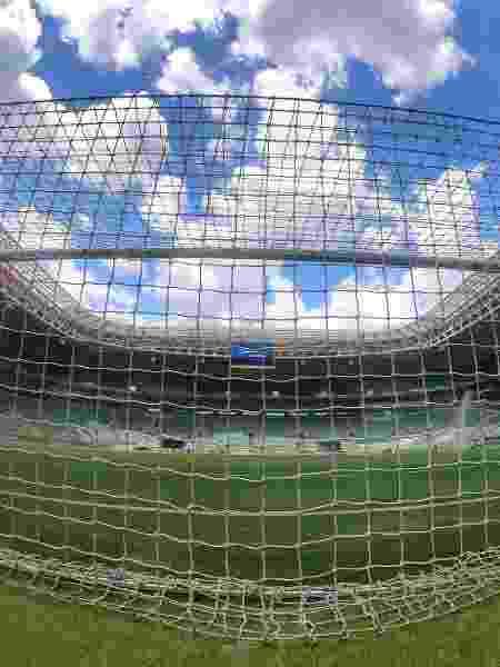 Novo gramado estreia hoje em Palmeiras x Mirassol - Divulgação/SE Palmeiras