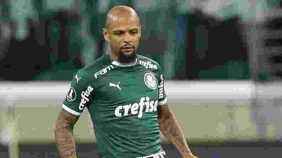 Felipe Melo vai voltar ao time titular do Palmeiras após cumprir suspensão contra o Goiás - Cesar Greco/Ag Palmeiras/Divulgação