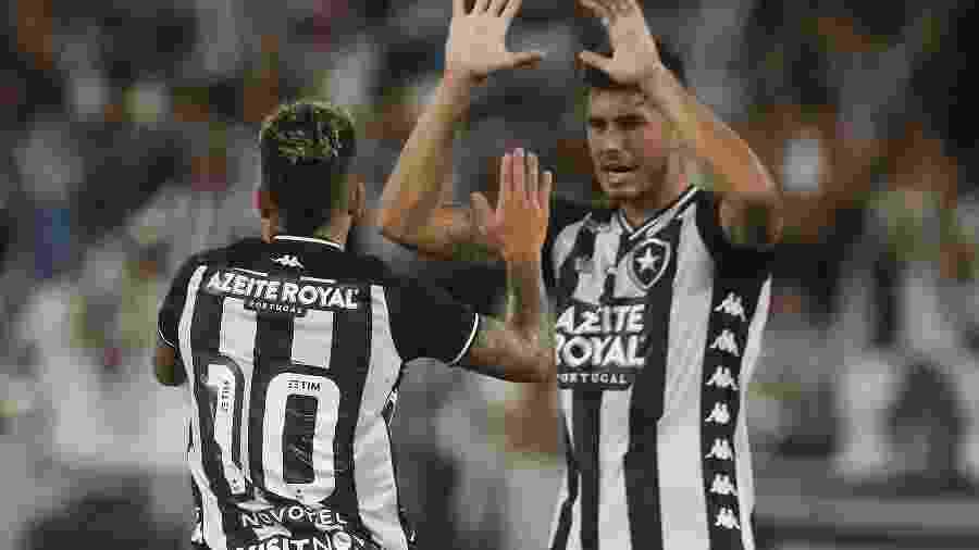Botafogo visita o Náutico nesta quarta-feira para decisivo duelo pela segunda fase da Copa do Brasil - Vitor Silva/Botafogo