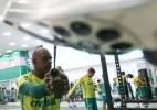Após amistoso, Palmeiras começa a semana com treinos físicos