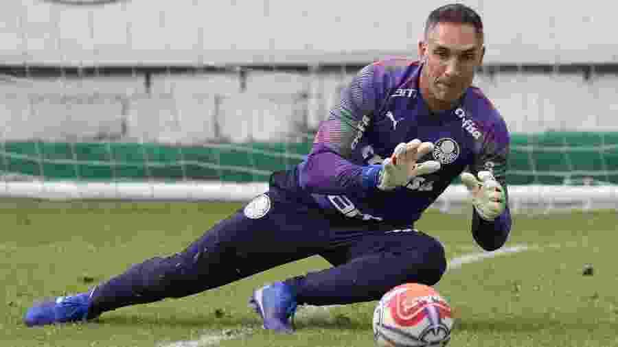 Fernando Prass deixou o Palmeiras, onde estava desde 2013, e está livre no mercado - Cesar Greco/Ag. Palmeiras