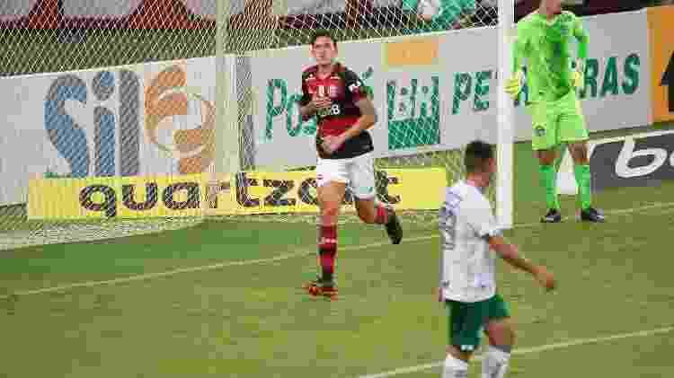 Pedro, do Flamengo, celebra gol contra o Goiás - Alexandre Vidal / Flamengo - Alexandre Vidal / Flamengo