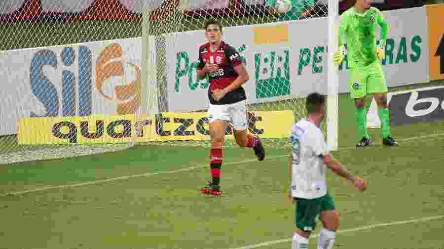 Pedro, do Flamengo, celebra gol contra o Goiás - Alexandre Vidal / Flamengo
