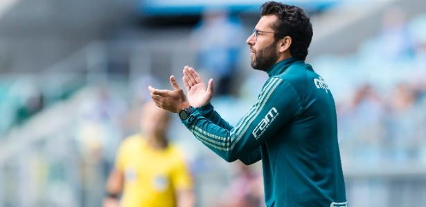 Alberto Valentim, técnico do Palmeiras, orienta o time no jogo contra o Grêmio - Jeferson Guareze/AGIF