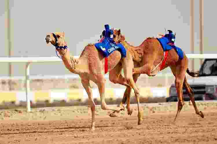 Corrida de camelo - Aurelien Meunier - PSG/PSG via Getty Images - Aurelien Meunier - PSG/PSG via Getty Images