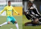 Fotomontagem: Cesar Greco/Agência Palmeiras e Vitor Silva/SSPress/Botafogo.