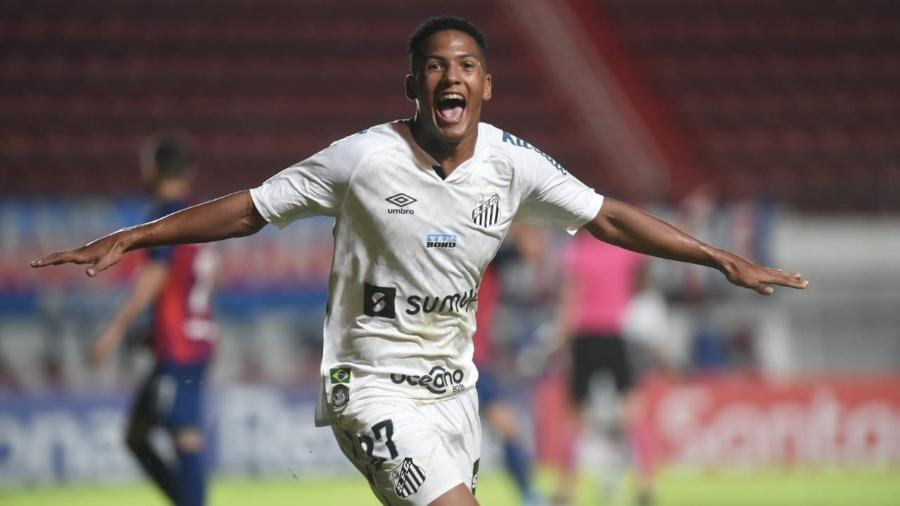 O gol de Ângelo já rendeu 100 kg de feijão à campanha - Divulgação/Santos FC