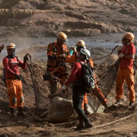 Especialistas alertam para os riscos da flexibilização proposta em leis ambientais - Washington Alves/Reuters