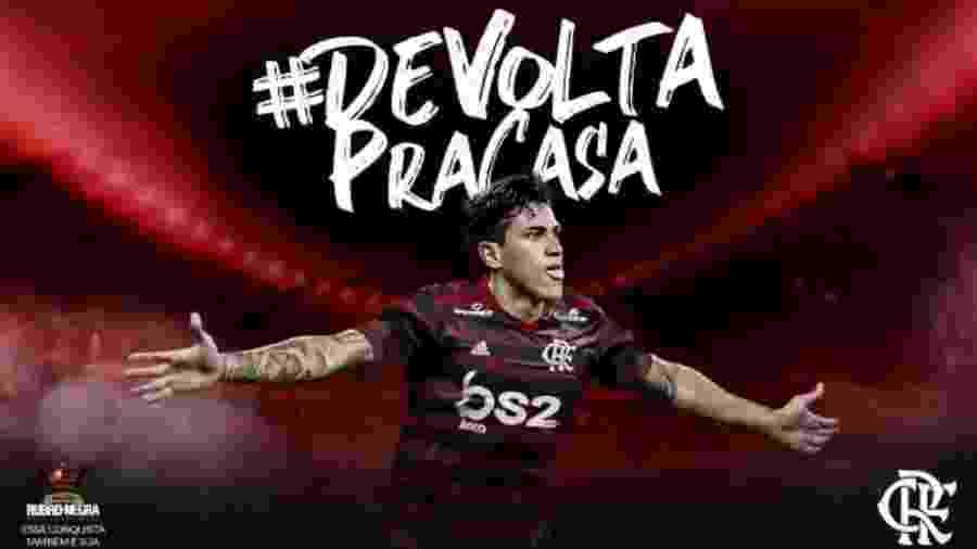 Flamengo anunciou oficialmente a chegada do atacante Pedro, ex-Fluminense - Reprodução
