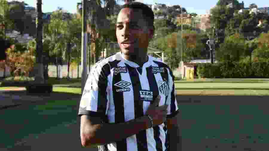 Robinho, atacante do Santos - Divulgação
