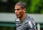 Carlos César vê jogo de entrega e Léo Silva elogia garotos do Atlético-MG - Bruno Cantini/Divulgação/Atlético-MG