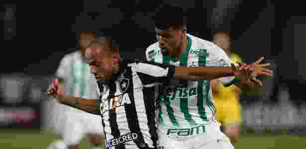 Juninho acompanha Roger durante jogo do Palmeiras contra o Botafogo - Luciano Belford/AGIF