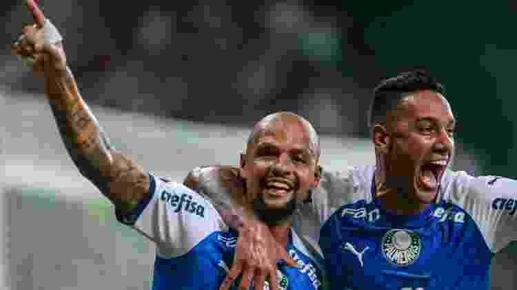 Felipe Melo comemora gol do Palmeiras contra o Melgar -     Ale Cabral/AGIF