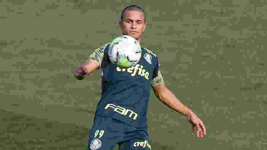 Gabriel Silva, atacante do Palmeiras - Cesar Greco