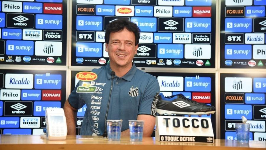 Fernando Diniz, durante entrevista de apresentação no Santos - Divulgação/Santos FC