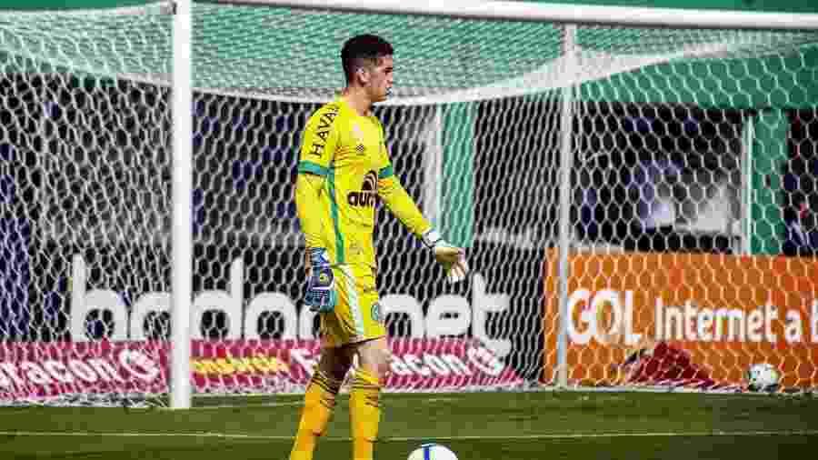 Tiepo, goleiro da Chapecoense - Rafael Bressan/Chapecoense