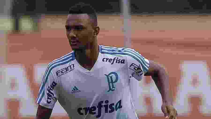 Luan Cândido é um dos destaques das categorias de base do Palmeiras - Cesar Greco/Ag. Palmeiras/Divulgação