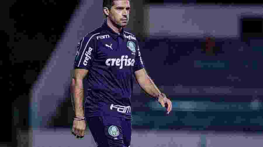 Técnico Abel Ferreira dedicou vitória do Palmeiras a Ramires e saiu em defesa do experiente jogador - Heber Gomes/AGIF