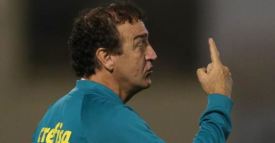 Palmeiras Cuca Cruzeiro Araraquara