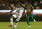 César Greco/Palmeiras