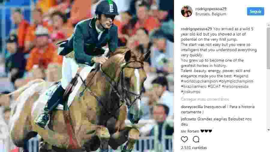 Baloubet, cavalo campeão olímpico com Rodrigo Pessoa em Atenas 2004 - Reprodução/Instagram
