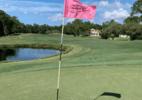 Jogador de golfe morre afogado ao procurar bola em lago em clube nos EUA - Reprodução