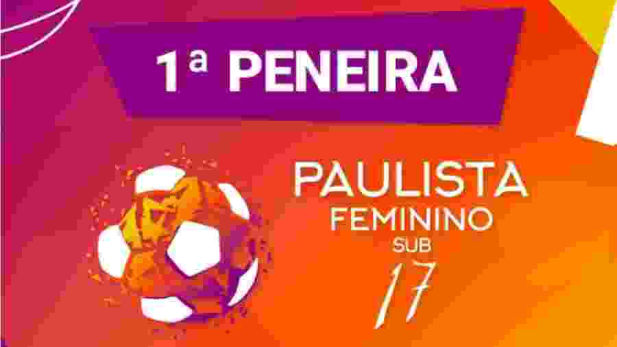 Comissão técnica de 14 times acompanha peneira sub-17 organizada pela Federação Paulista - Reprodução site FPF