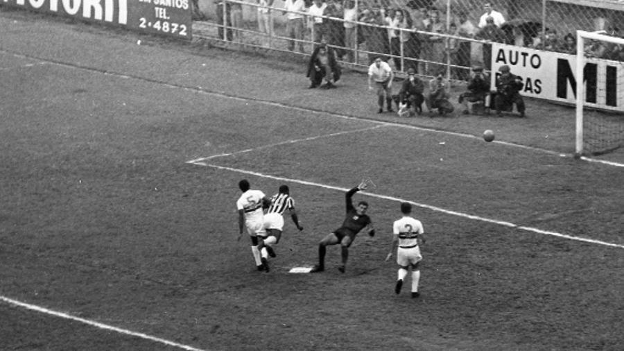 Antoninho esteve em campo pelo Botafogo-SP na goleada sofrida para o Santos por 11 a 0 em 1964 - mas sua carreira teve grandes momentos - Acervo/Antônio Lúcio