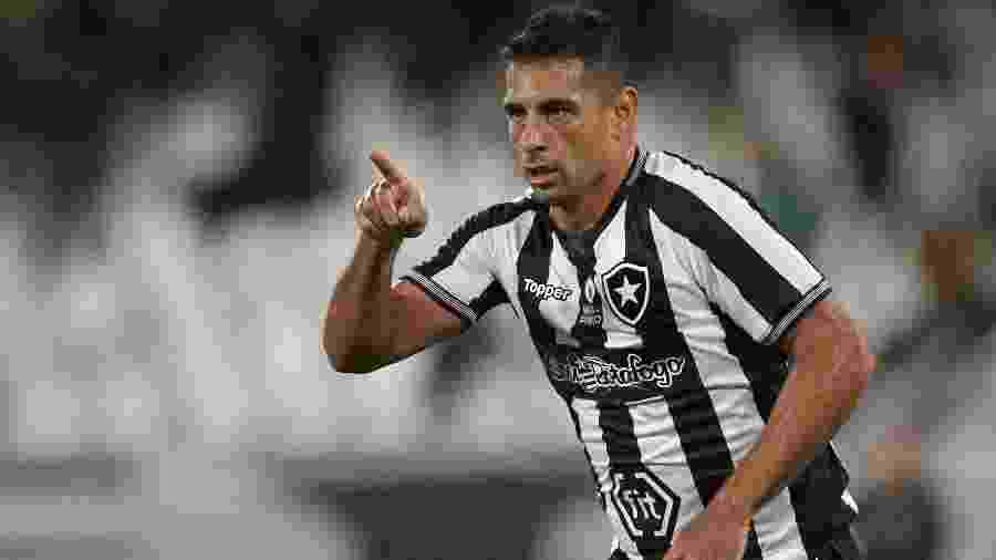 Diego Souza tem início de trajetória no Botafogo com gol e assistência - Vitor Silva/SSPress/Botafogo