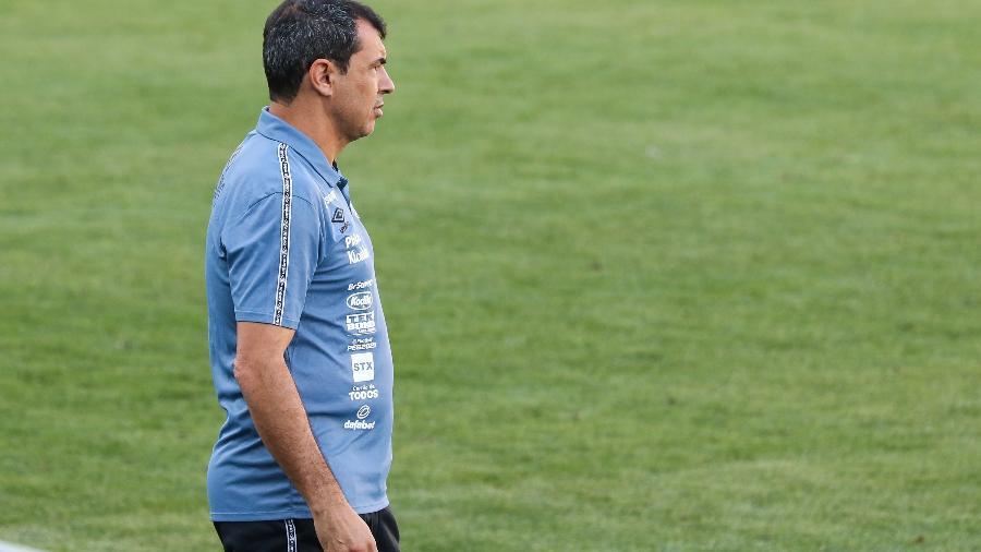 Carille observa equipe do Santos no duelo diante do Juventude - Luiz Erbes/AGIF