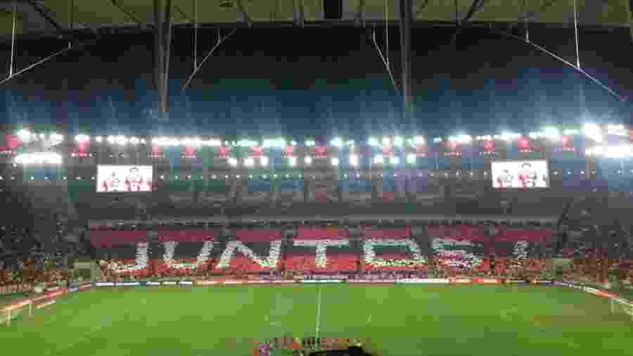 Torcida do Flamengo tem lotado o Maracanã em todos os jogos do time no ano - Leo Burlá / UOL Esporte