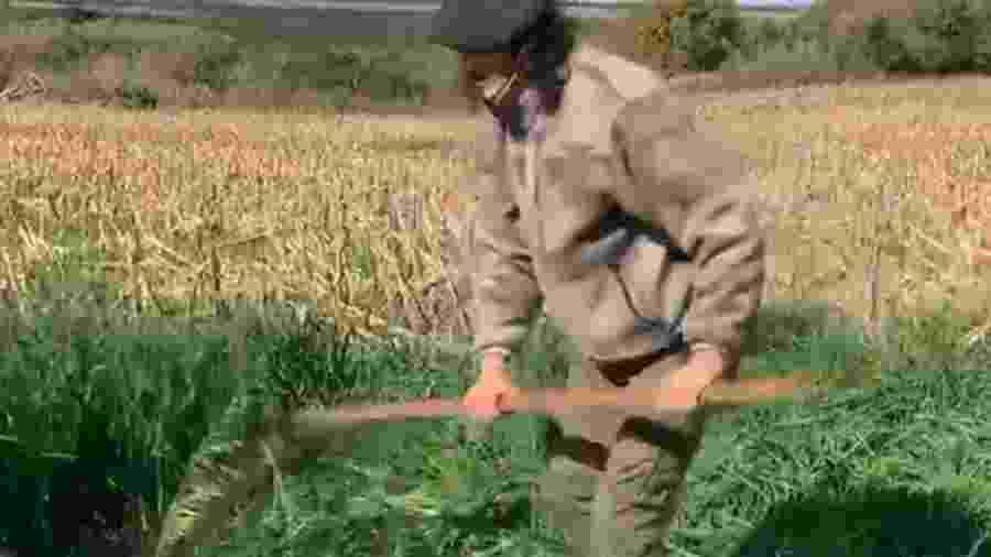 Cavani corta pasto de seu sítio em Salto, no Uruguai - Reprodução/Instagram