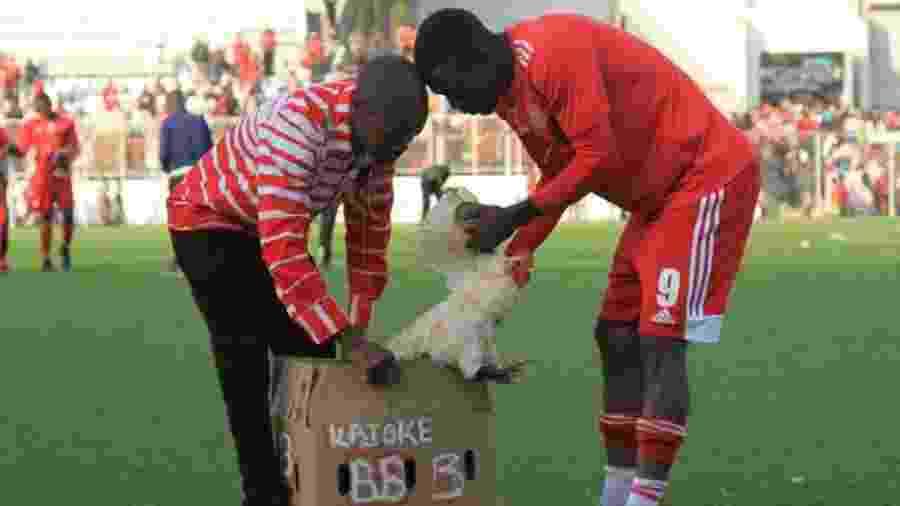 Hassan Kajoke recebe galo de prêmio após marcar dois gols no Malaui - Divulgação/Facebook
