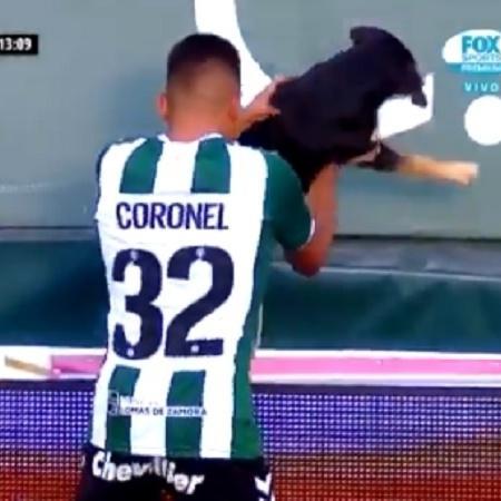 Emanuel Coronel retira cachorro de campo - Reprodução