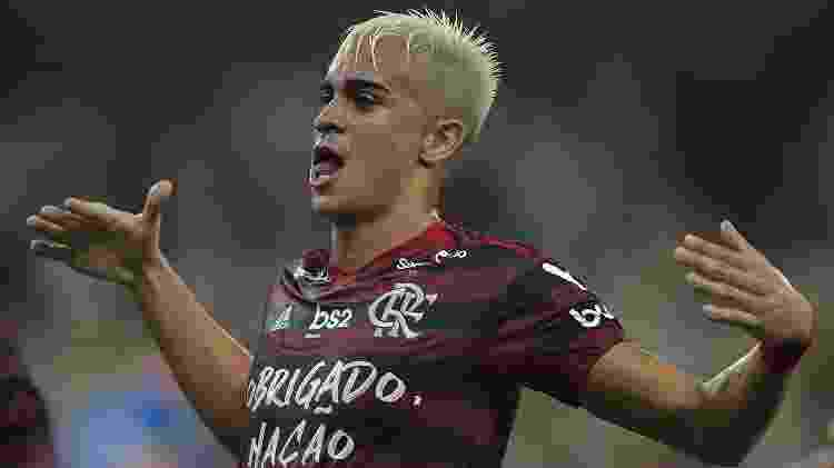 Reinier comemora gol pelo Flamengo contra o Avaí - Thiago Ribeiro/AGIF - Thiago Ribeiro/AGIF