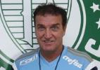 Ag. Palmeiras/Divulgação