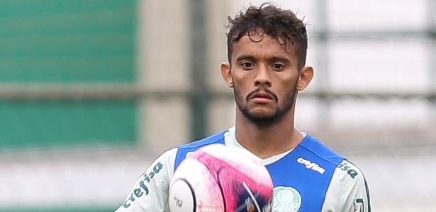 Scarpa acertou a sua permanência no Palmeiras